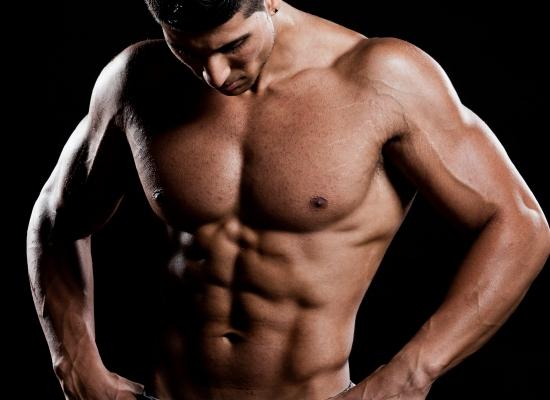 muscular tissue quick