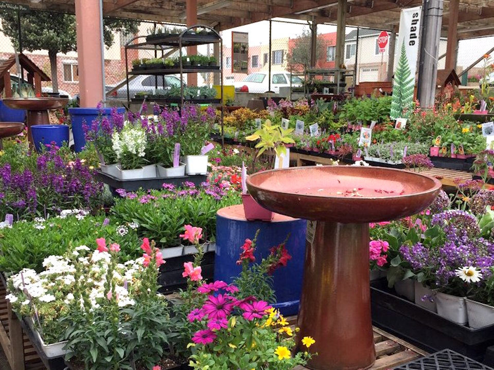 Why Garden Center Outlet Need To Be Looking For Garden Deals?